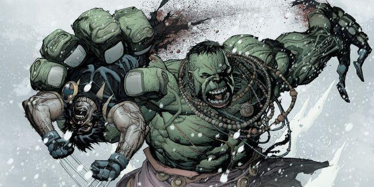 Hulk-vs-Wolverine-from-Marvel-comics